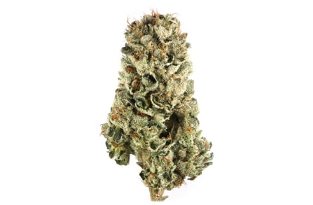 weed cannabis marijuana strains for depression and anxiety